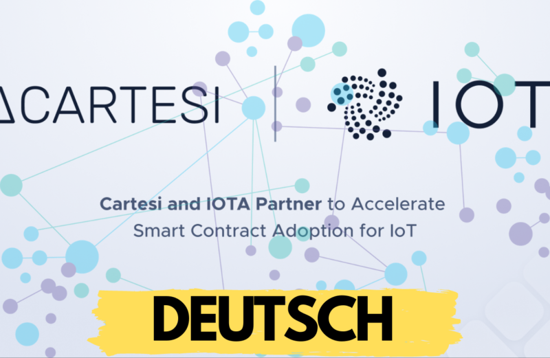 cartesi iota Partnerschaft